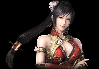 Dynasty Warriors 9..